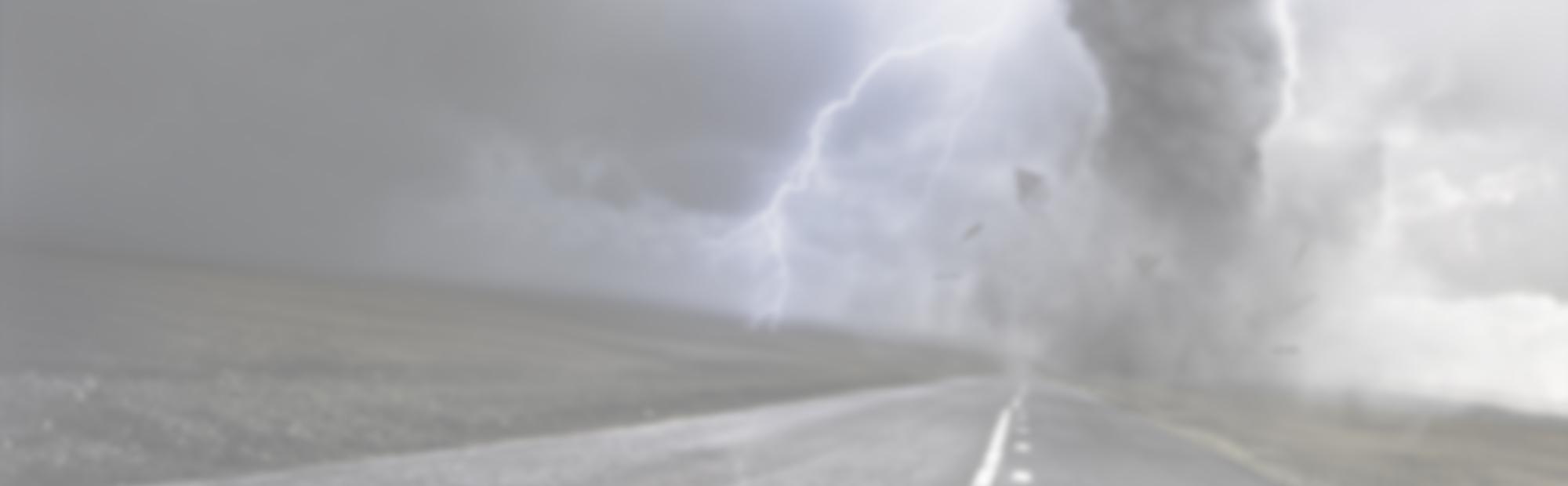 LMD_HP-Banner-Disaster_Background_Blank-e1424803115955